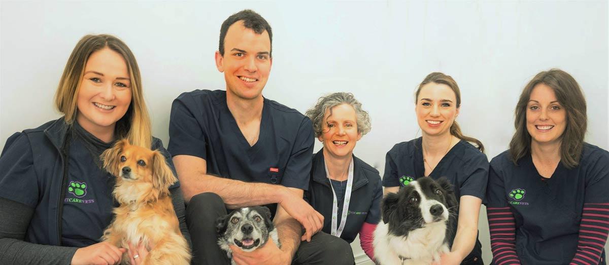 Petcare Vets Team